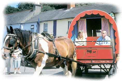 Sitting pretty in an Irish Horse Drawn Caravan