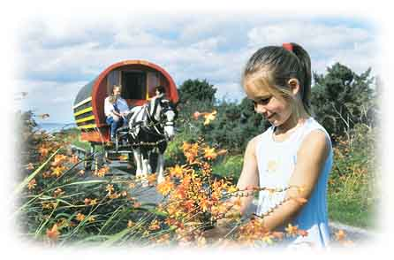 Holiday in an Irish Horse-Drawn caravan as used historically by the nomadic 'Travelling People' of Ireland.